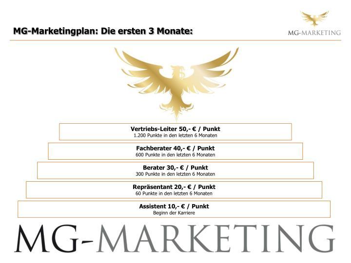 MG-Marketingplan: Die ersten 3 Monate: