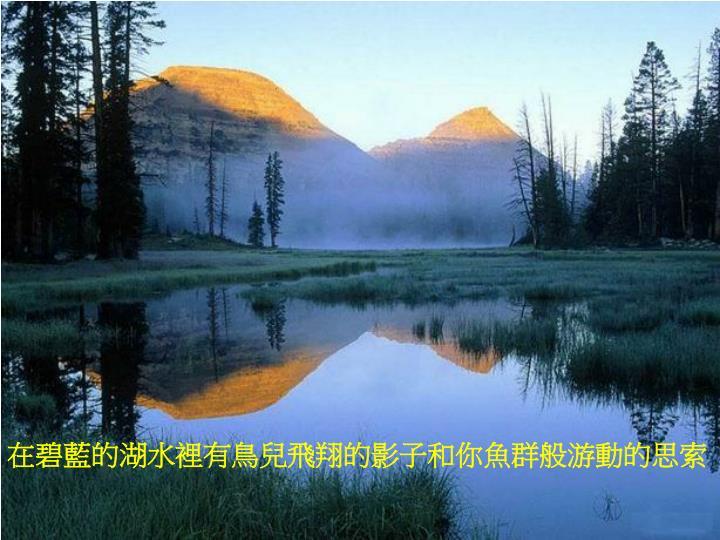 在碧藍的湖水裡有鳥兒飛翔的影子和你魚群般游動的思索