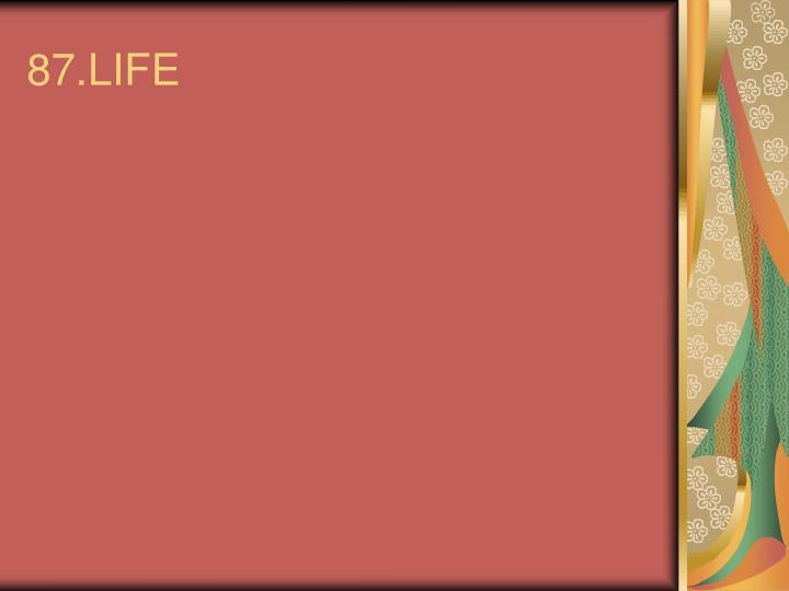 87.LIFE