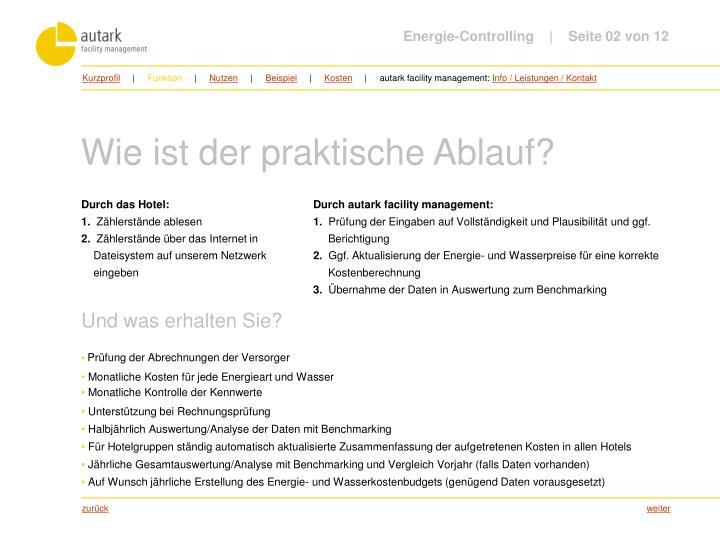 Energie-Controlling         Seite 02 von 12