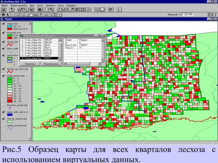 Рис.5 Образец карты для всех кварталов лесхоза с использованием виртуальных данных.