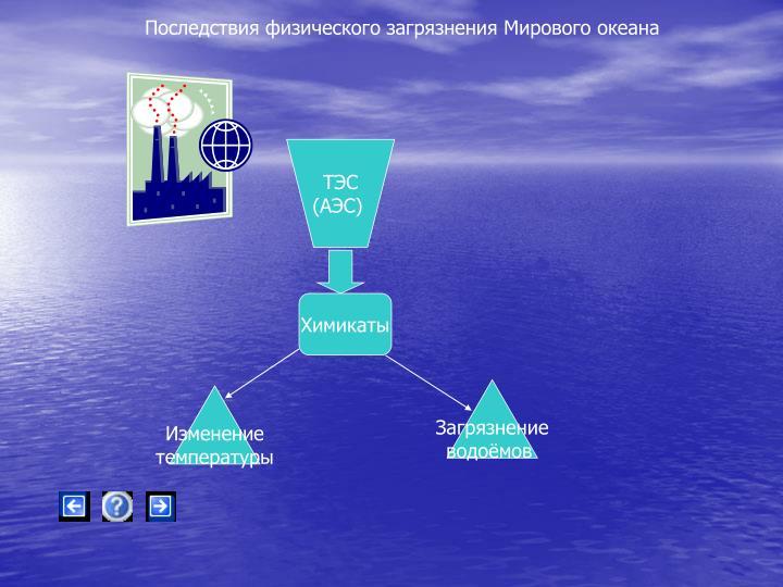 Последствия физического загрязнения Мирового океана
