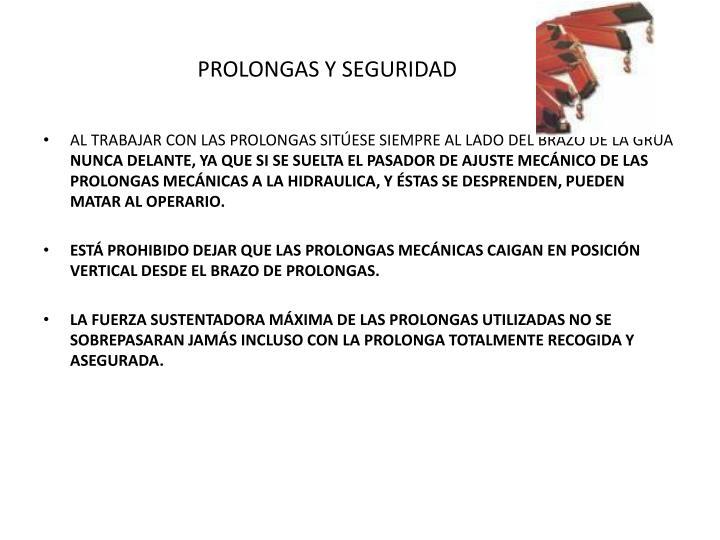 PROLONGAS Y SEGURIDAD