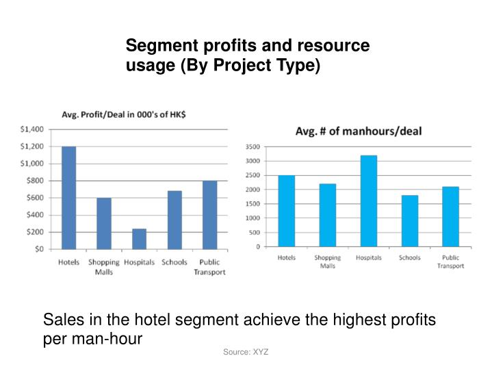 Segment profits and resource usage (By Project Type)