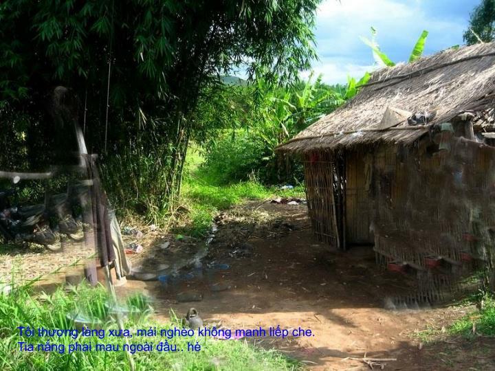 Tôi thương làng xưa, mái nghèo không manh liếp che. Tia nắng phai mau ngoài đầu.. hè