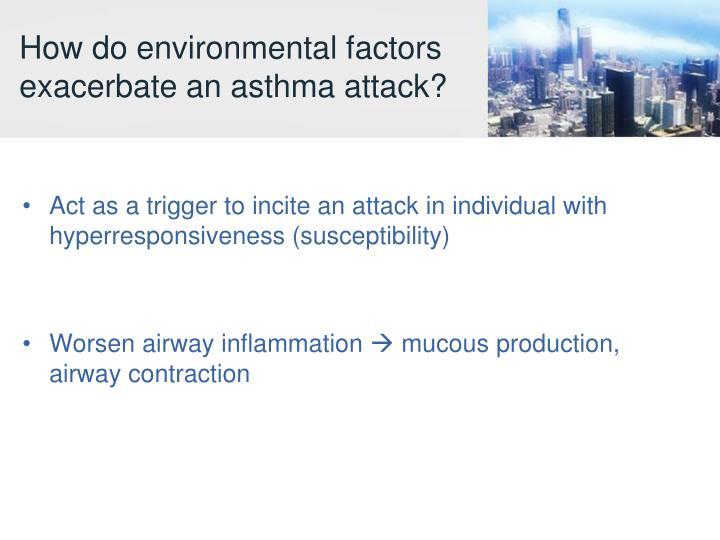 How do environmental factors exacerbate an asthma attack?