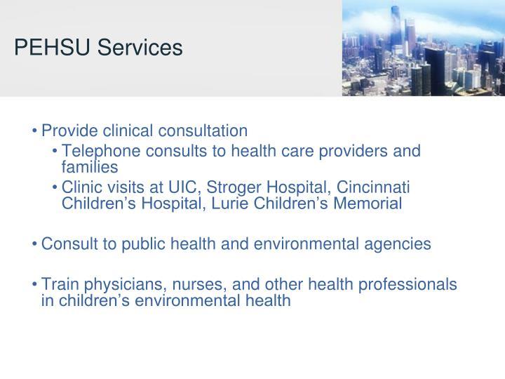 PEHSU Services