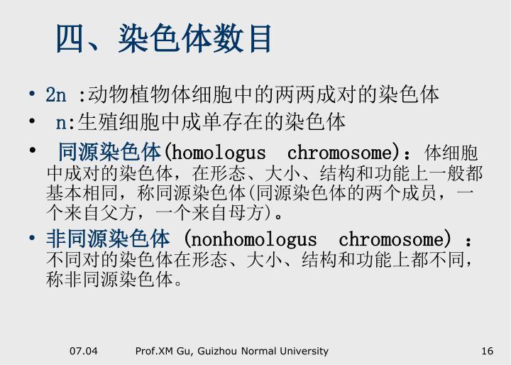 四、染色体数目