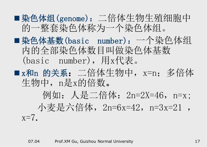 染色体组(