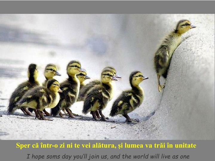 Sper că într-o zi ni te vei alătura, şi lumea va trăi în unitate