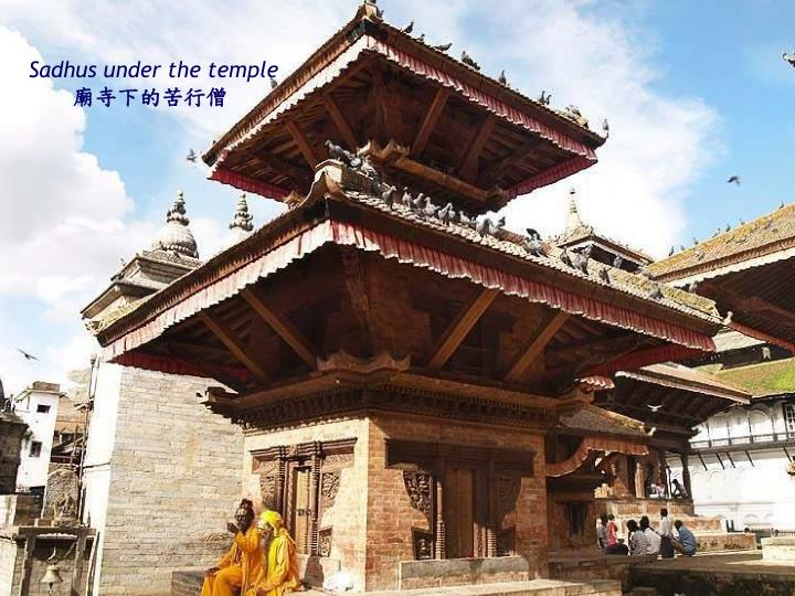 Sadhus under the temple
