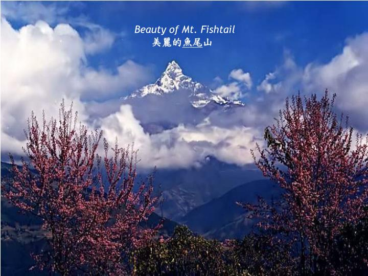 Beauty of Mt. Fishtail