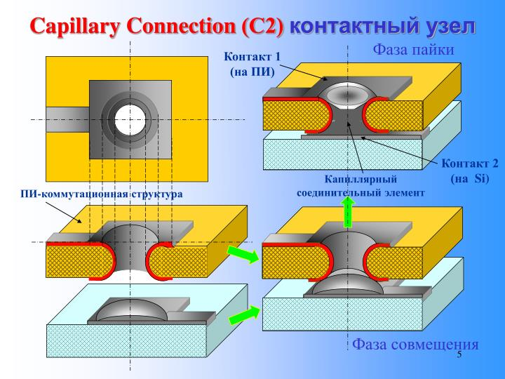 Capillary Connection