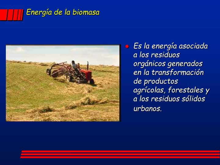 Energía de la biomasa