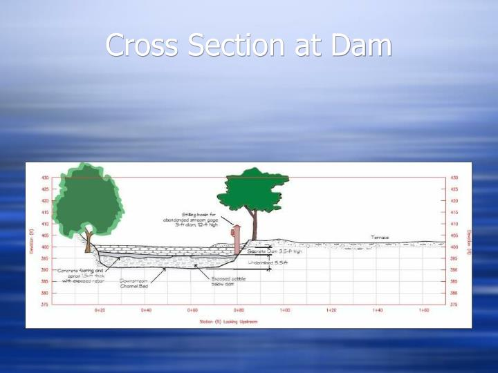 Cross Section at Dam