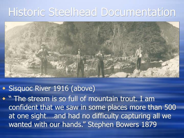 Historic Steelhead Documentation