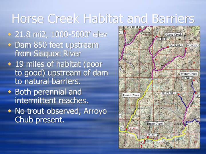 Horse Creek Habitat and Barriers