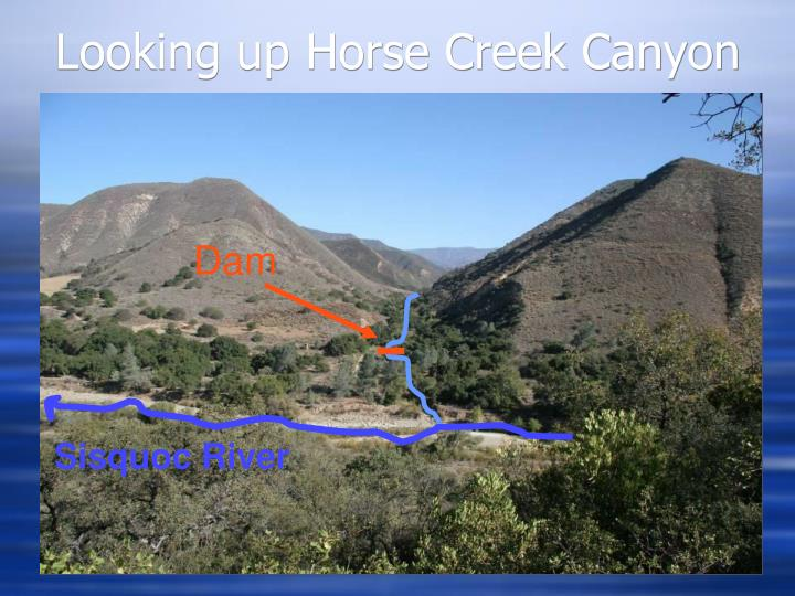 Looking up Horse Creek Canyon