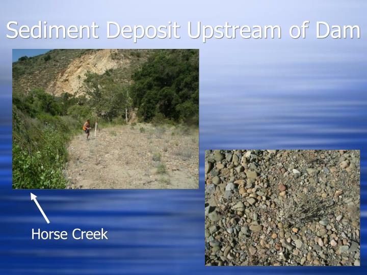 Sediment Deposit Upstream of Dam