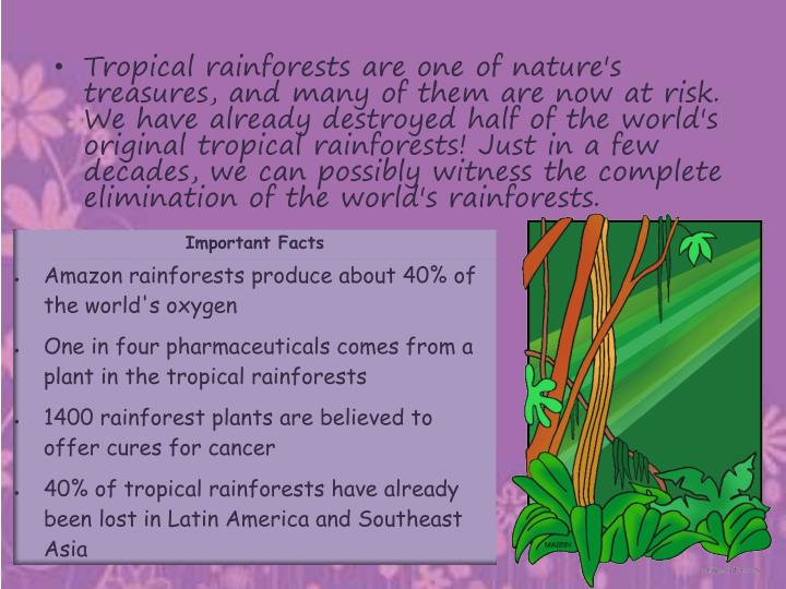 Tropical rainforests are one of nature's treasures, and many of them are now at risk. We have already destroyed half of the world's original tropical rainforests! Just in a few decades, we can possibly witness the complete elimination of the world's rainforests.