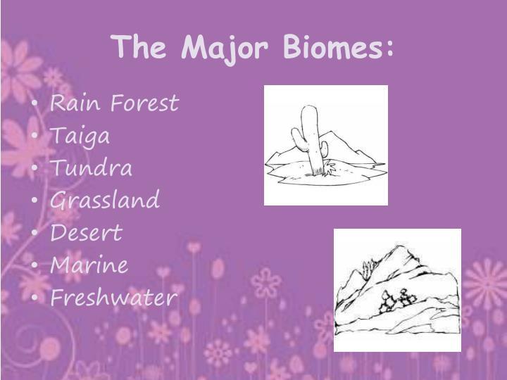 The Major Biomes: