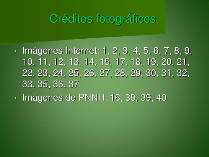 Créditos fotográficos