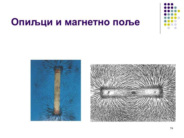 Опиљци и магнетно поље