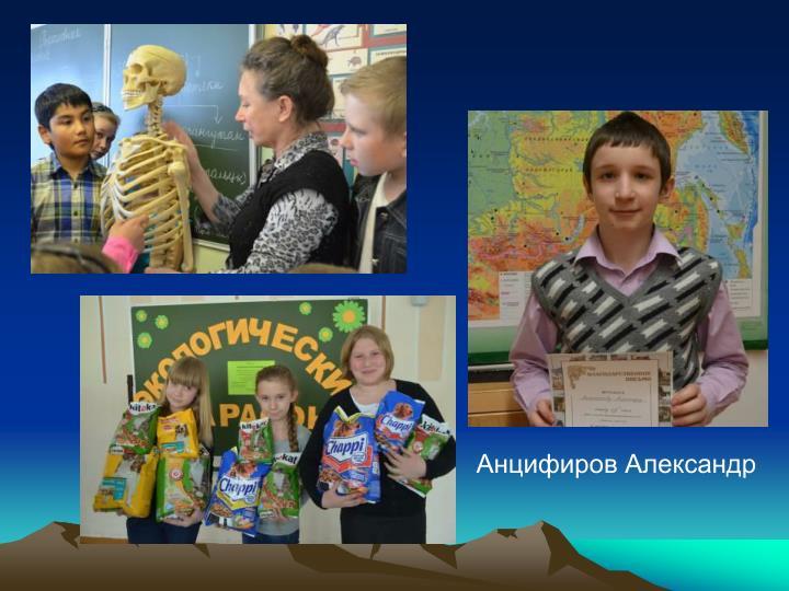 Анцифиров Александр
