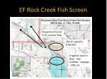 ef rock creek fish screen