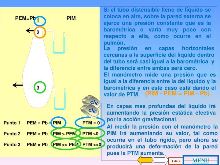 PEM=Pb                     PIM