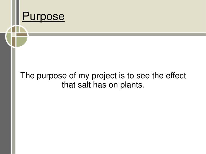 The purpose of my project is to see the effect that salt has on plants.