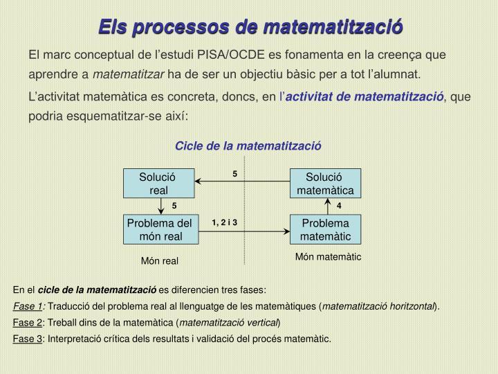 Cicle de la matematització