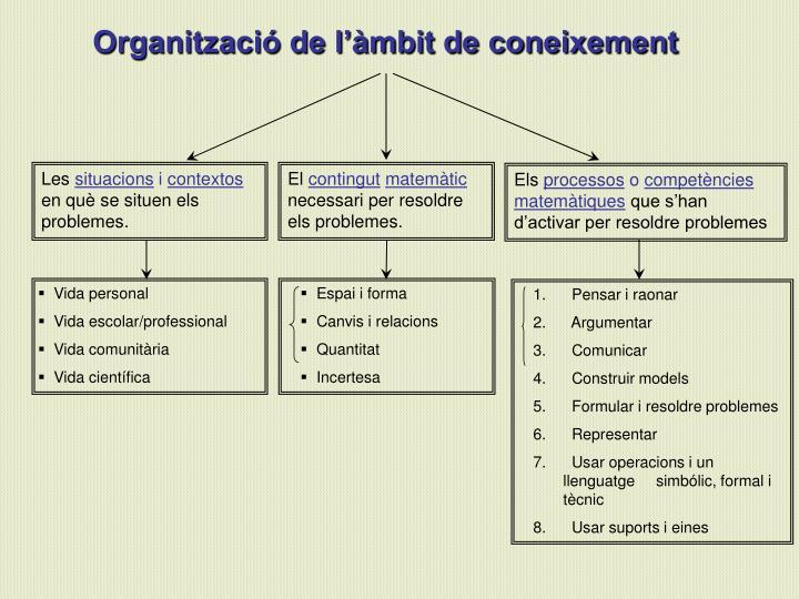 Organització de l'àmbit de coneixement
