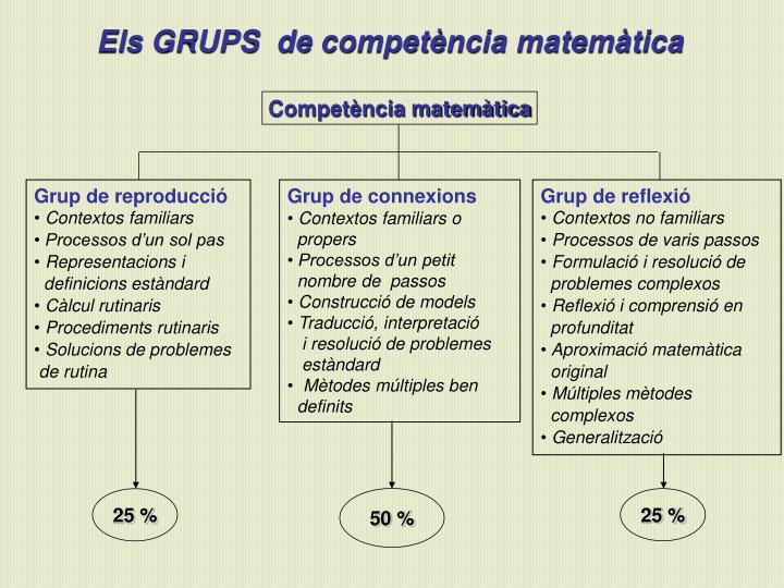 Competència matemàtica