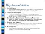 key areas of action