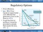 regulatory options1