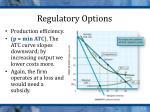 regulatory options2