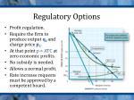 regulatory options3