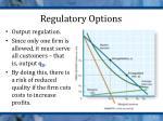 regulatory options4