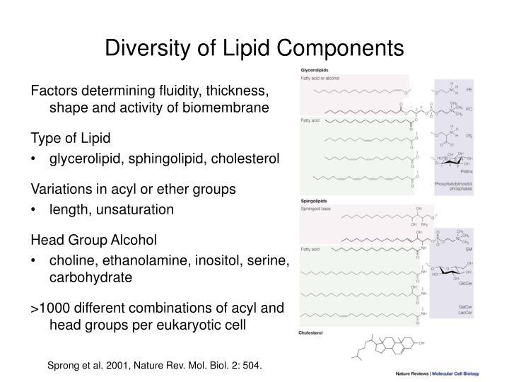 Diversity of Lipid Components