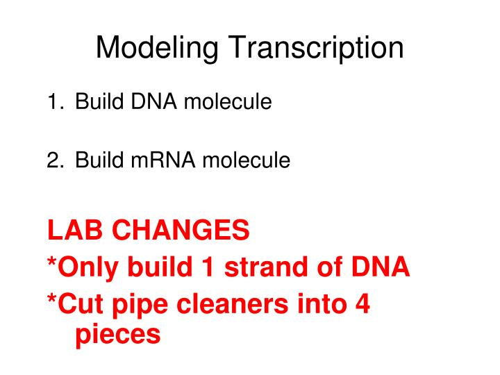Modeling Transcription