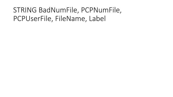 STRING BadNumFile, PCPNumFile, PCPUserFile, FileName, Label