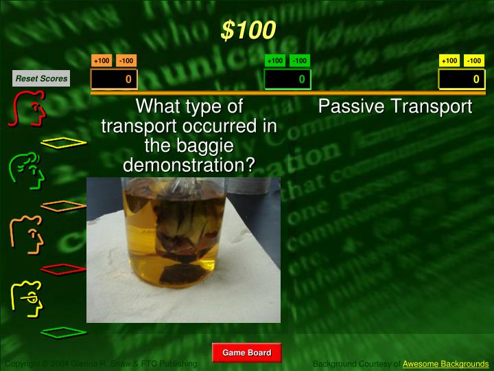 What type of transport occurred in the baggie demonstration?