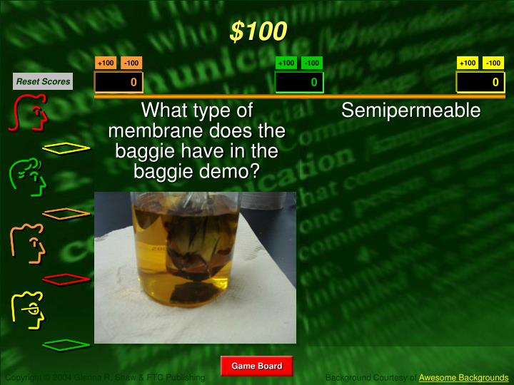 What type of membrane does the baggie have in the baggie demo?
