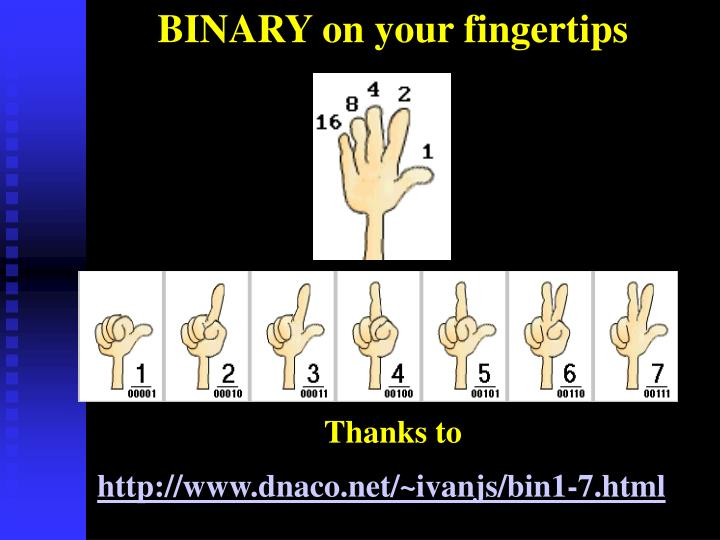 BINARY on your fingertips