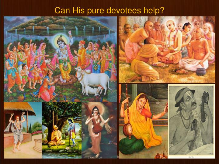 Can His pure devotees help?