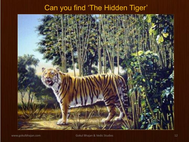 Can you find 'The Hidden Tiger'