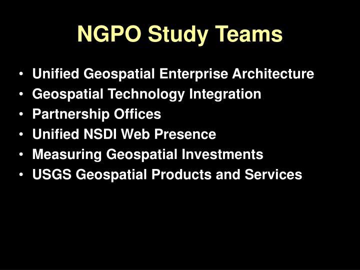 NGPO Study Teams