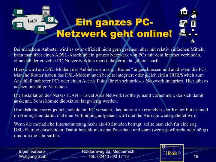 Ein ganzes PC-Netzwerk geht online!