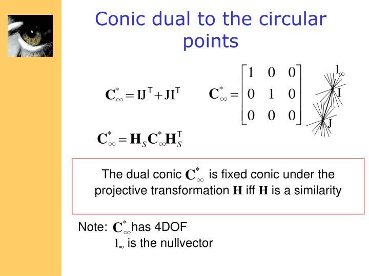 The dual conic